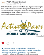 Promotions Mobile - Active Paws Mobile Grooming